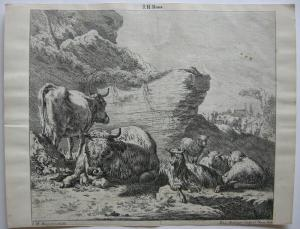 Joh. Heinr. Roos (1631-1685) Kühe Schaf Ziegen vor Felsen Orig Kupferstich 167e0