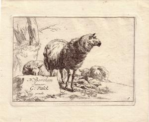 Gerard Valck nach Berchem Schafe unter Baum Orig Kupferstich um 1700