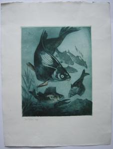 Josef Rösl (1853-1920) Fische Orig Radierung Blauton auf Bütten 1924 signiert