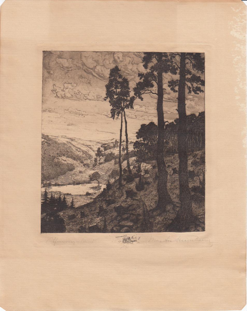 Max Jos Fliegerbauer (1874 - ?) Thüringerland Orig Radierung 1910 signiert 0
