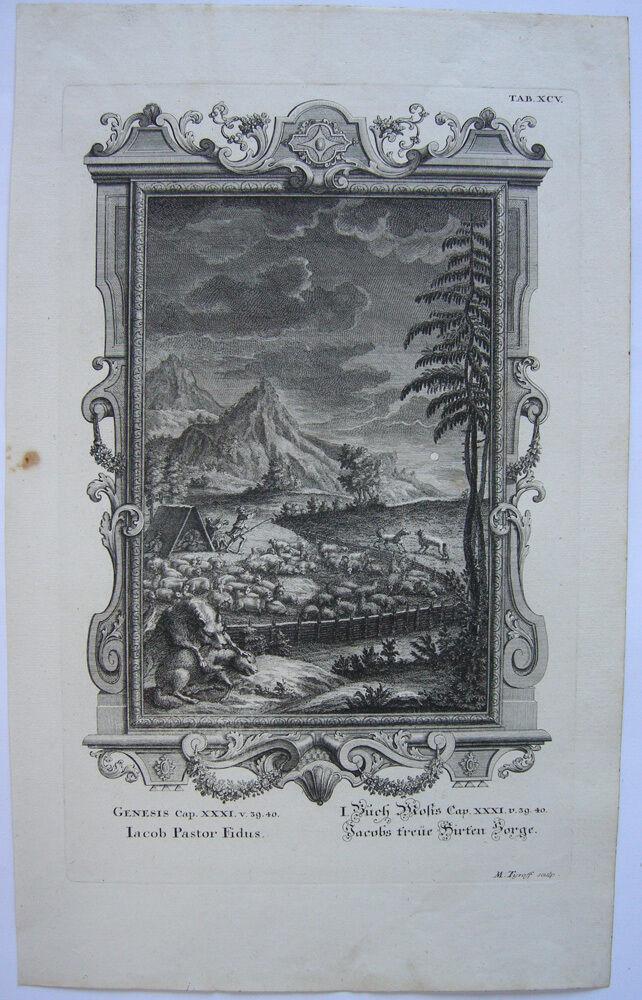 Treue Hirt Jakob Schafherde im Pferch Org Kupferstich Scheuchzer-Bibel 1731 0