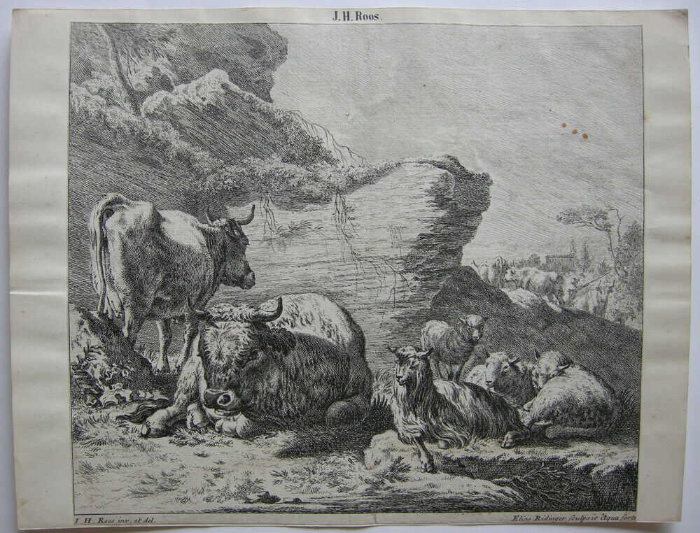 Joh. Heinr. Roos (1631-1685) Kühe Schaf Ziegen vor Felsen Orig Kupferstich 1670 0