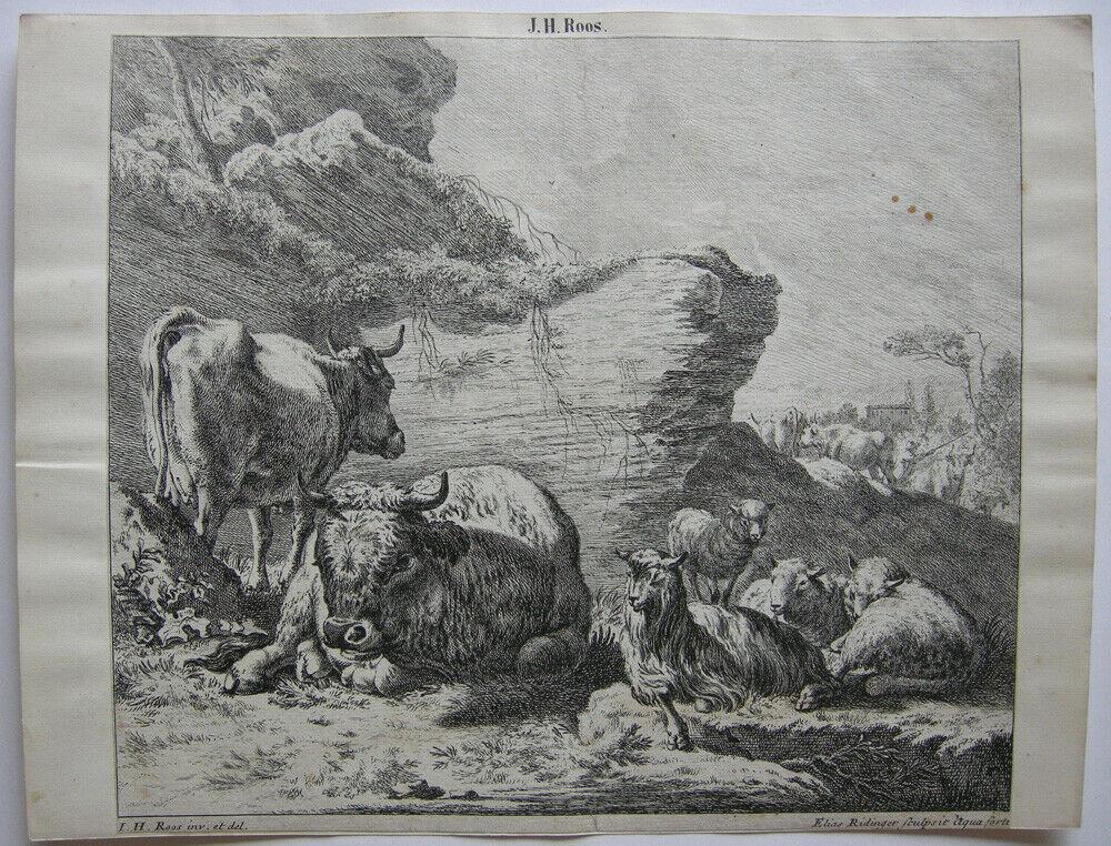 Joh. Heinr. Roos (1631-1685) Kühe Schaf Ziegen vor Felsen Orig Kupferstich 167e0 0