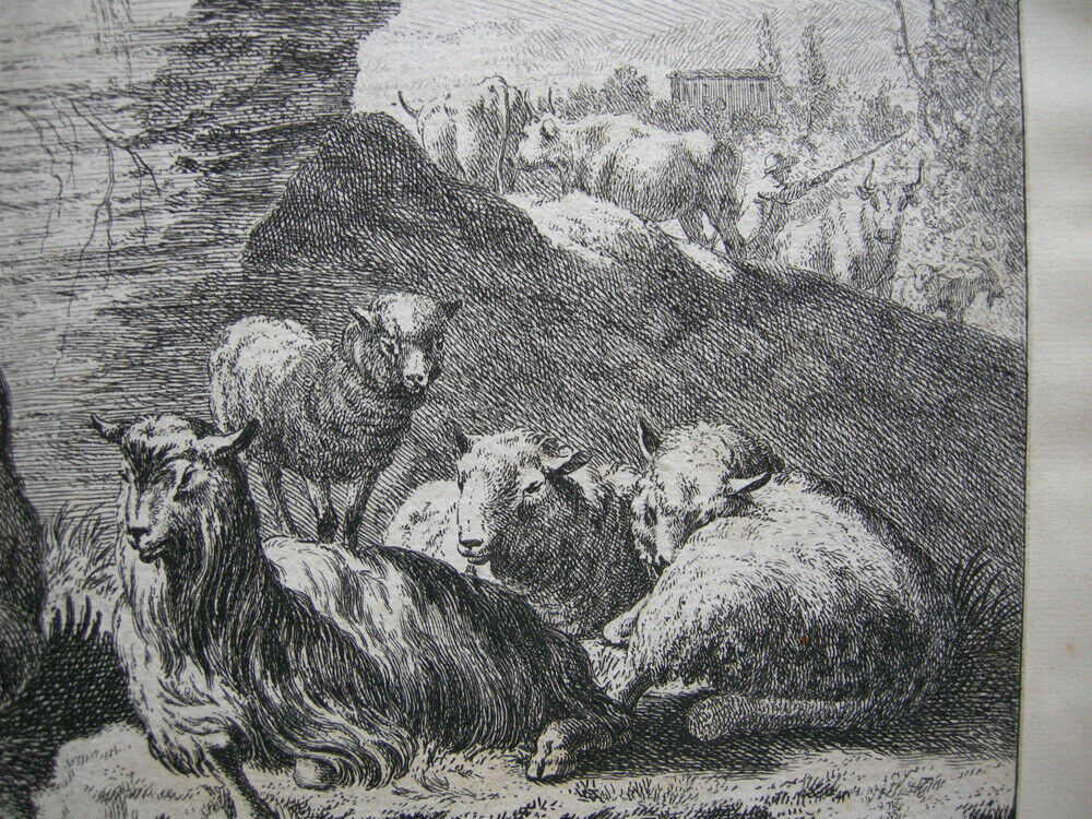 Joh. Heinr. Roos (1631-1685) Kühe Schaf Ziegen vor Felsen Orig Kupferstich 1670 1