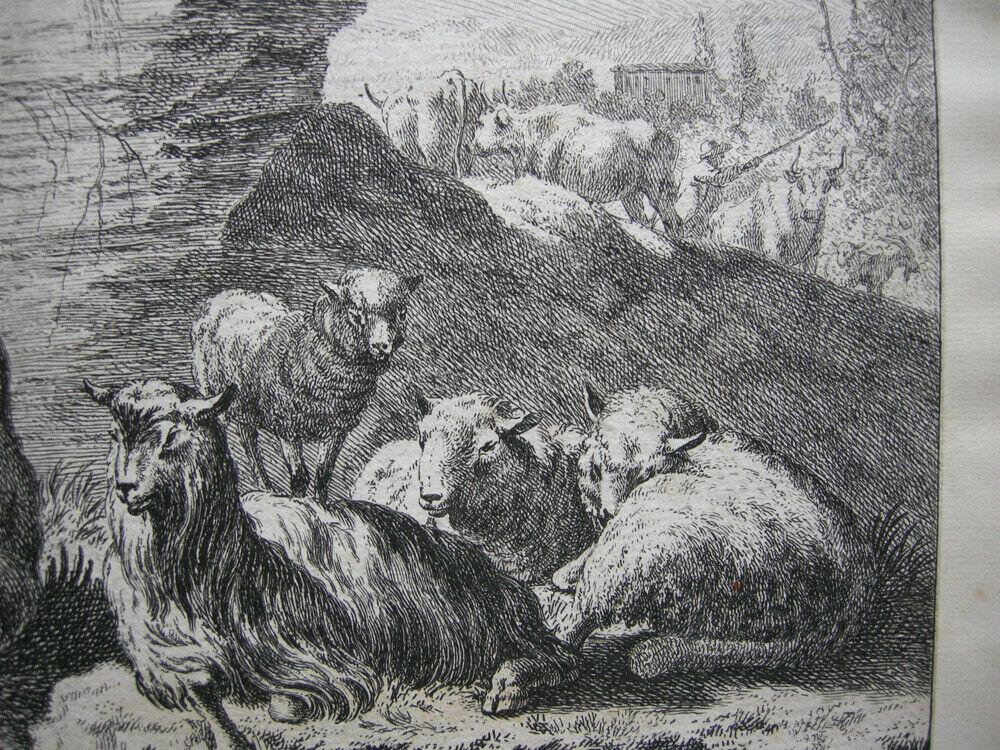 Joh. Heinr. Roos (1631-1685) Kühe Schaf Ziegen vor Felsen Orig Kupferstich 167e0 1