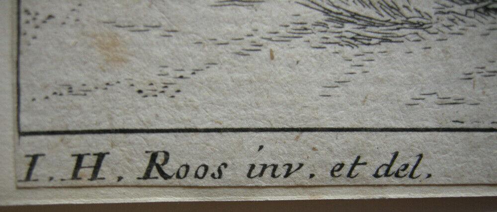 Joh. Heinr. Roos (1631-1685) Kühe Schaf Ziegen vor Felsen Orig Kupferstich 1670 3