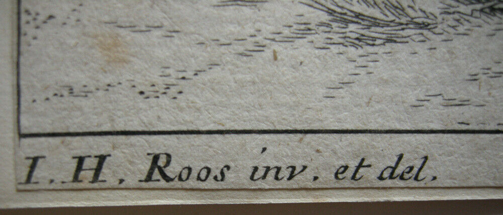 Joh. Heinr. Roos (1631-1685) Kühe Schaf Ziegen vor Felsen Orig Kupferstich 167e0 3