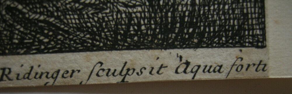 Joh. Heinr. Roos (1631-1685) Kühe Schaf Ziegen vor Felsen Orig Kupferstich 1670 4