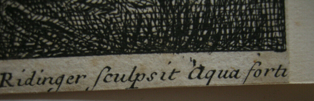 Joh. Heinr. Roos (1631-1685) Kühe Schaf Ziegen vor Felsen Orig Kupferstich 167e0 4