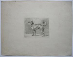 Johann Adam Klein (1792-1875) Zum Neuen Jahr 1825 Hund Tiffon Orig Radierung