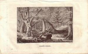 Korsika Corse France Forêt Corse Stahlstich Gravure de fer 1850