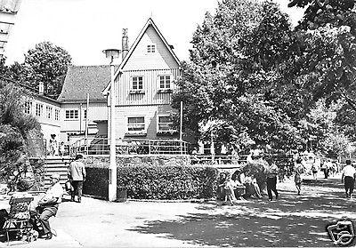 Ansichtskarte, Kriebstein, Talsperre Kriebstein, HO-Gaststätte, belebt, 1972