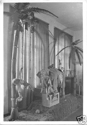 Ansichtskarte, Sonneberg Thür., Spielzeugmuseum, Elefantengruppe