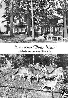 Ansichtskarte, Sonneberg Thür., Naherholungszentrum Blockhütte