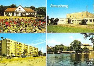 Ansichtskarte, Strausberg, vier Abb., u.a.