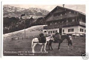 Ansichtskarte, Blomberghaus bei Bad Tölz, belebt, Packpferde, 1943