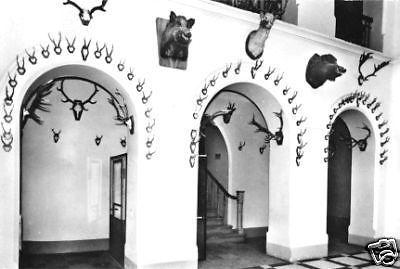 Ansichtskarte, Binz Rügen, OT Granitz, Jagdschloß, Eingangshalle