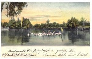 Ansichtskarte, Franzensbad, Stadtteich, belebt, 1903