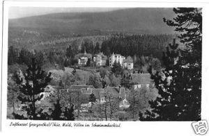 Ansichtskarte, Georgenthal Thür. Wald, Villen im Schwimmbachtal, 1956