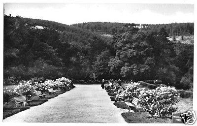 Ansichtskarte, Friedrichroda Thür. Wald, Puschkinpark, 1962