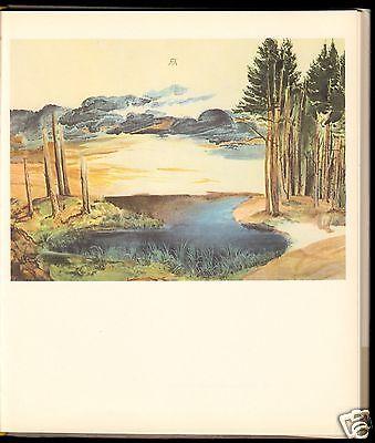 Dürer, Albrecht, Aquarelle, 24 farbige Tafeln, 1971 1