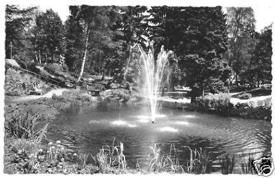 Ansichtskarte, Bad Sachsa Südharz, Kurpark, Springbrunnen, 1963
