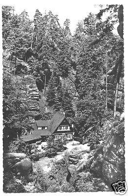 Ansichtskarte, Uttewalde Sächs. Schweiz, Uttewalder Grund, Waldidylle, 1962