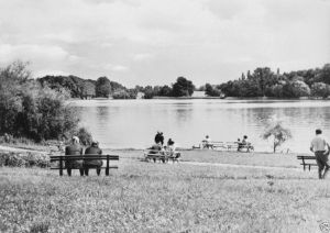 Ansichtskarte, Flecken Zechlin, Partie am Schwarzen See, belebt, 1969