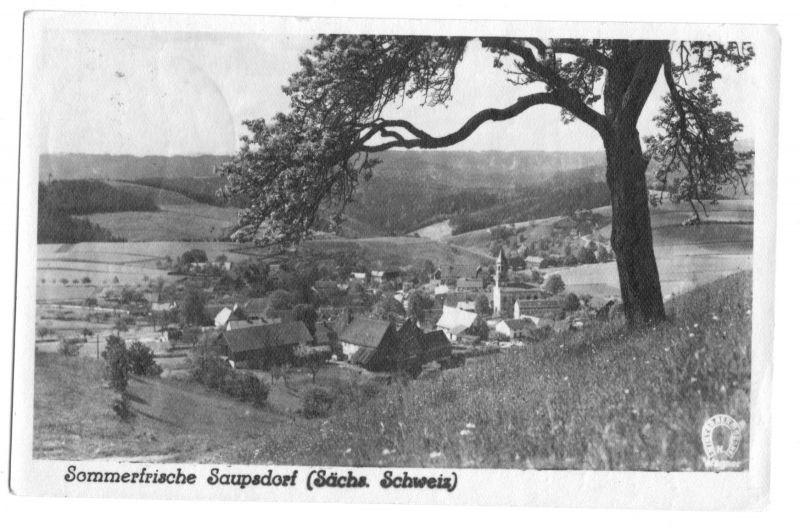 Ansichtskarte, Saupsdorf Sächs. Schweiz, Gesamtansicht, 1956, Echtfoto