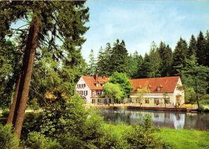 Ansichtskarte, Horn - Bad Meinberg 1, OT Leopoldstal, Waldhotel Silbermühle, 1976