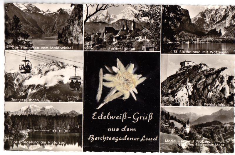 Ansichtskarte, Berchtesgadener Land, sieben Abb., Edelweis (echt), um 1958
