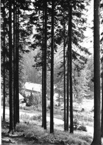 Ansichtskarte, Schmiedeberg OT Pöbeltal, Ferienheim Walsmühle der SDAG Wismut, 1975