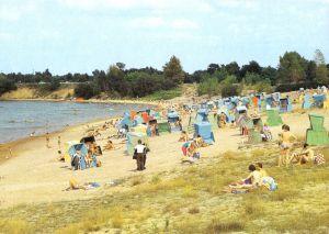 Ansichtskarte, Senftenberg, OT Großkoschen, Senftenberger See, Strand, belebt, 1990