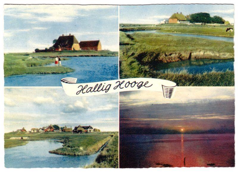 Ansichtskarte, Hallig Hooge, vier Abb., um 1970