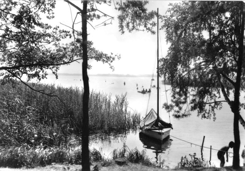 Ansichtskarte, Wolzig Kr. Königs Wusterhausen, Am Wolziger See, 1982
