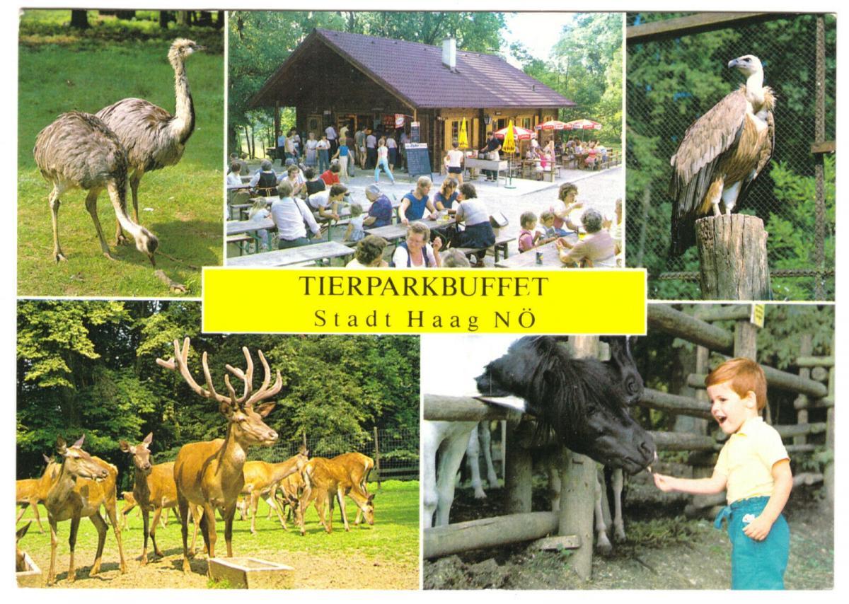 Ansichtskarte, Stadt Haag, NÖ, Tierpark, fünf Abb., um 1980