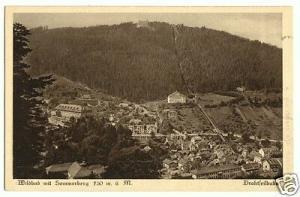 Ansichtskarte, Wildbad im Schwarzwald, Teilansicht mit Sommerberg und Drahtseilbahn, 1927
