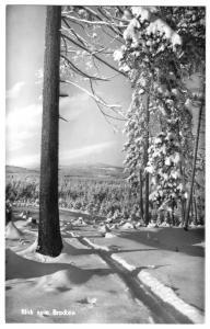 Ansichtskarte, Harz, winterlicher Blick zum Brocken, 1960