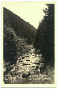 Ansichtskarte, Holzhau Erzgeb., Partie im Muldetal, Echtfoto, 1954