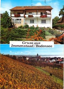 Ansichtskarte, Immenstaad Bodensee, Haus Baumann, zwei Abb., 1979
