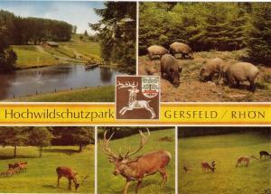 Ansichtskarte, Gersfeld Rhön, Hochwildschutzpark, fünf Abb., um 1999