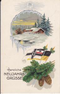 Ansichtskarte Glückwunschkarte Neujahr Fahnen Patriotika Erster Weltkrieg Feldpost 1915