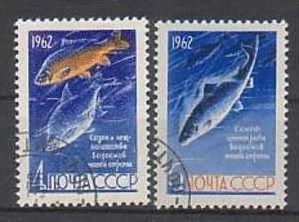 Fische UDSSR 2640 -1  o (m 594) siehe scan