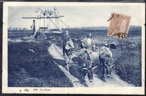 Tunesien  alte Karte  ( da695 ) siehe scan