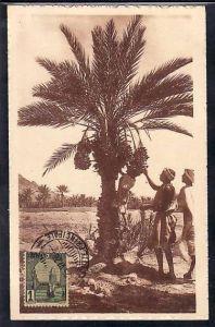 Tunesien  alte Karte  ( da679 ) siehe scan
