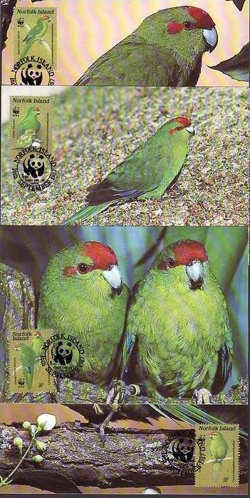WWF -MC  Norfolk    ( dc8173  )  siehe scan