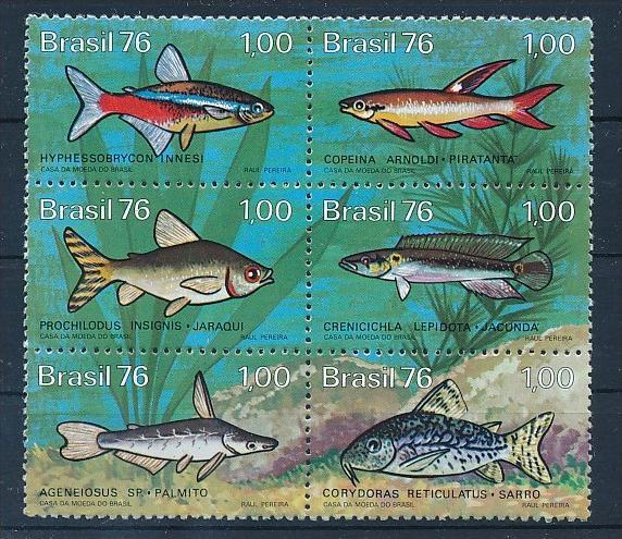 Fische -Brasilien     **        (bc8689  ) siehe scan !