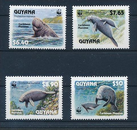 Meeres Tiere  - Guyana      **        (bc8685  ) siehe scan !