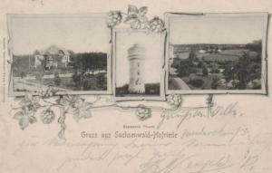 Sachsenwald-Hofriede   ...-alte Karte    (ke 569  ) siehe scan