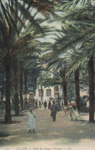Algerien -alte Karte  (ka8855 ) siehe Bild